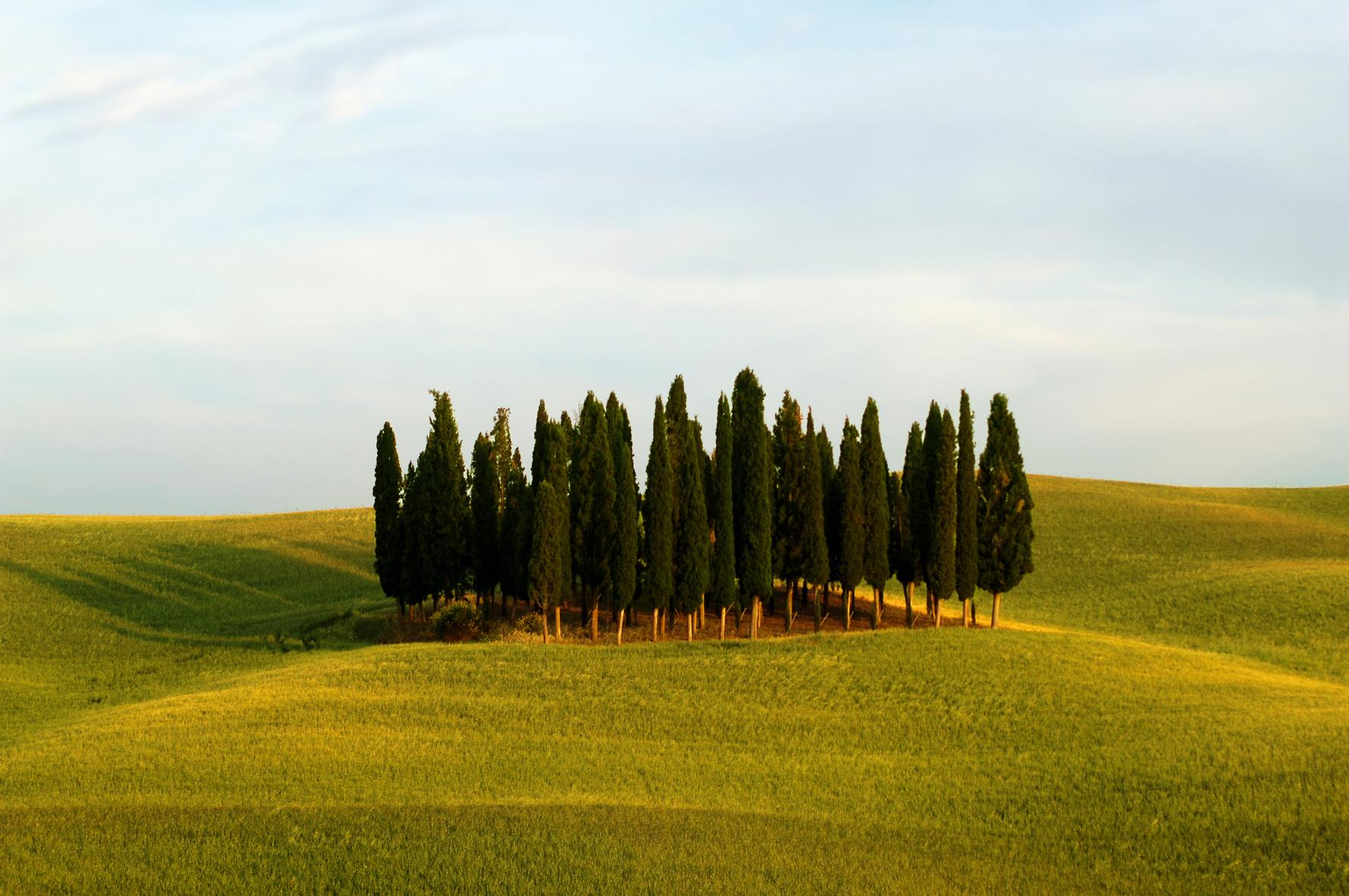tuscan hills near florence